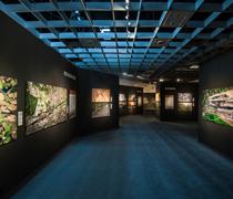 Human Footprint – Ausstellung Münster