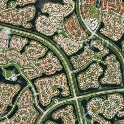 Die tropischen Sümpfe der Everglades in Florida