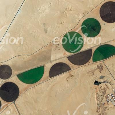 WadiAlSahba - Kreisbewässerungsfelder für die Viehzucht