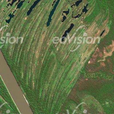 Rio Mamore - Schwemmland