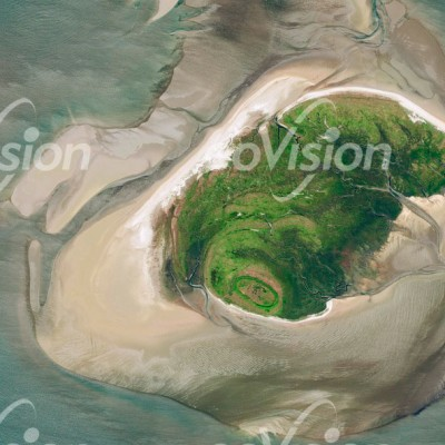 Mellum Wattkueste - Brutgebiet für Seevögel