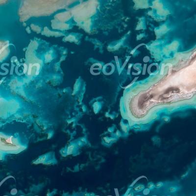 Daffat al Wajh - Große Vielfalt an Meerestieren