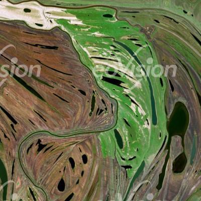 Amur - Sumpflandschaft