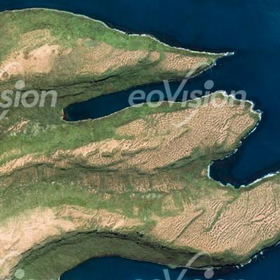 Auckland Island - südlich von Neuseeland