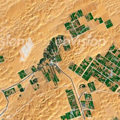 Desert Farming - Ackerbau in der Wüste