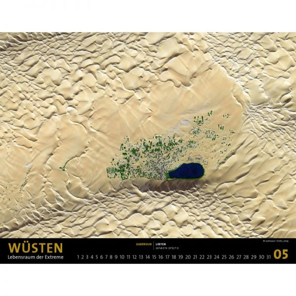 wuesten_kalender_05w