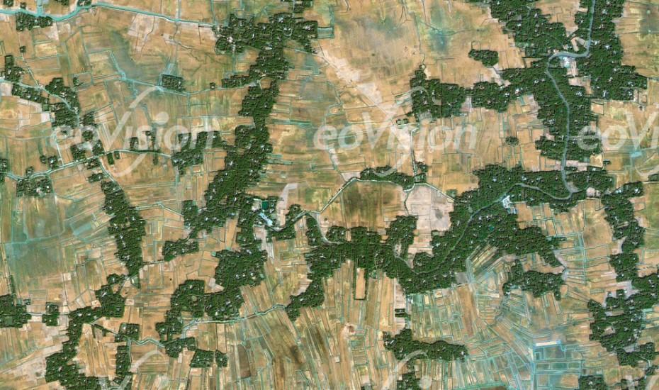 Bewässerung der Reisfelder im Gangesdelta