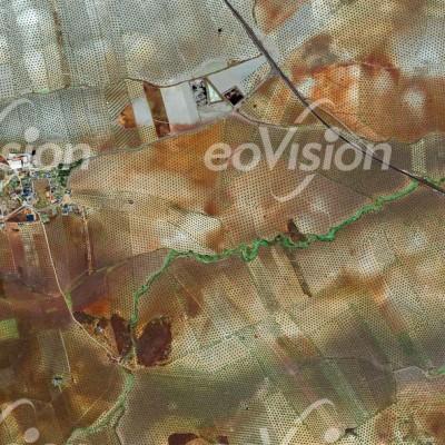 Jaen - das größte Olivenanbaugebiet der Welt