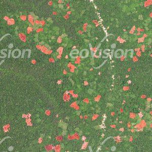 Kongo - Straßendörfer eingebettet in Urwäldern