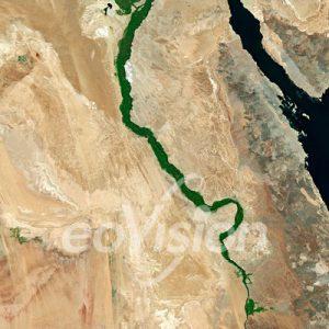 Nildelta