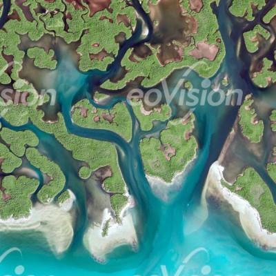 011_Everglades_cut