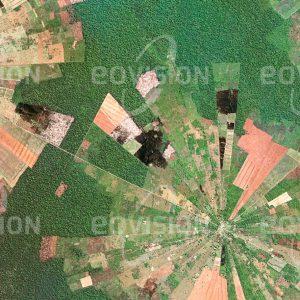 """Das Satellitenbild """"SANTA TERESA - Bolivien"""" ist dem Bildband """"HUMAN FOOTPRINT - Satellitenbilder dokumentieren menschliches Handeln"""" entnommen. Bildbeschreibung: Seit Mitte der 1980er Jahre wurden im Rahmen des Tierras-Baja-Projekts der bolivianischen Regierung Menschen vom Altiplano nach Ostbolivien umgesiedelt. Von den gleichmäßig angeordneten Dorfzentren ausgehend breiten sich wie hier bei San Julián Rodungssektoren in den tropischen Trockenwald aus, auf denen unter anderem Sojabohnen und Sonnenblumen angebaut werden. Das sternförmige Muster von reifen und geernteten Feldern ist von Urwaldresten umgeben."""