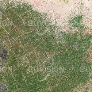 """Das Satellitenbild """"BUDANG - Sudan"""" ist dem Bildband """"HUMAN FOOTPRINT - Satellitenbilder dokumentieren menschliches Handeln"""" entnommen. Bildbeschreibung: Geometrische Linienraster in der Vegetation zeugen im Süden des Sudans von der Suche nach Erdöl- und Erdgasvorkommen."""