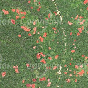 """Das Satellitenbild """"LINGOMO - Kongo - DRC"""" ist dem Bildband """"HUMAN FOOTPRINT - Satellitenbilder dokumentieren menschliches Handeln"""" entnommen. Bildbeschreibung: Eingebettet in die tropisch-feuchten Urwälder liegen Straßendörfer, deren Bewohner das Gebiet der Kongo-Ebene rund um die Straße landwirtschaftlich nutzen. Neu errichtete Straßen sind der erste Schritt zur Entwaldung, da das ungenutzte Land Menschen anzieht, die immer neue Anbauflächen benötigen. Damit einher geht ein Verlust an zusammen-hängenden natürlichen Lebensräumen."""