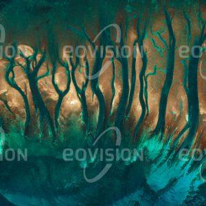 """Das Satellitenbild """"BISCAYNE - USA"""" ist dem Bildband """"UNTOUCHED NATURE - Naturlandschaften in Satellitenbildern"""" entnommen. Bildbeschreibung: Der Südostküste Floridas vorgelagert liegt das drittgrößte Korallenriff der Erde. Mangrovenwälder, Manatees (Seekühe) und Meeresschildkröten prägen den seit 1980 bestehenden Nationalpark."""