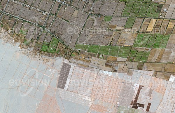 """Das Satellitenbild """"KUMUBOYICUN - China"""" ist dem Bildband """"WÜSTEN - Lebensraum der Extreme"""" entnommen. Bildbeschreibung: Am Südrand des Tarim-Beckens liegt zwischen dem Gebirgszug des Kunlun Shan und der Taklamakan eine Kette von Oasen. Diese befinden sich am Rand von Schwemmkegeln, die von den Flüssen aus dem Kunlun Shan gebildet wurden. Da hier ausreichend Wasser vorhanden ist, kann Landwirtschaft betrieben werden. Die Oasen waren wichtige Stützpunkte entlang des südlichen Zweiges der Seidenstraße."""